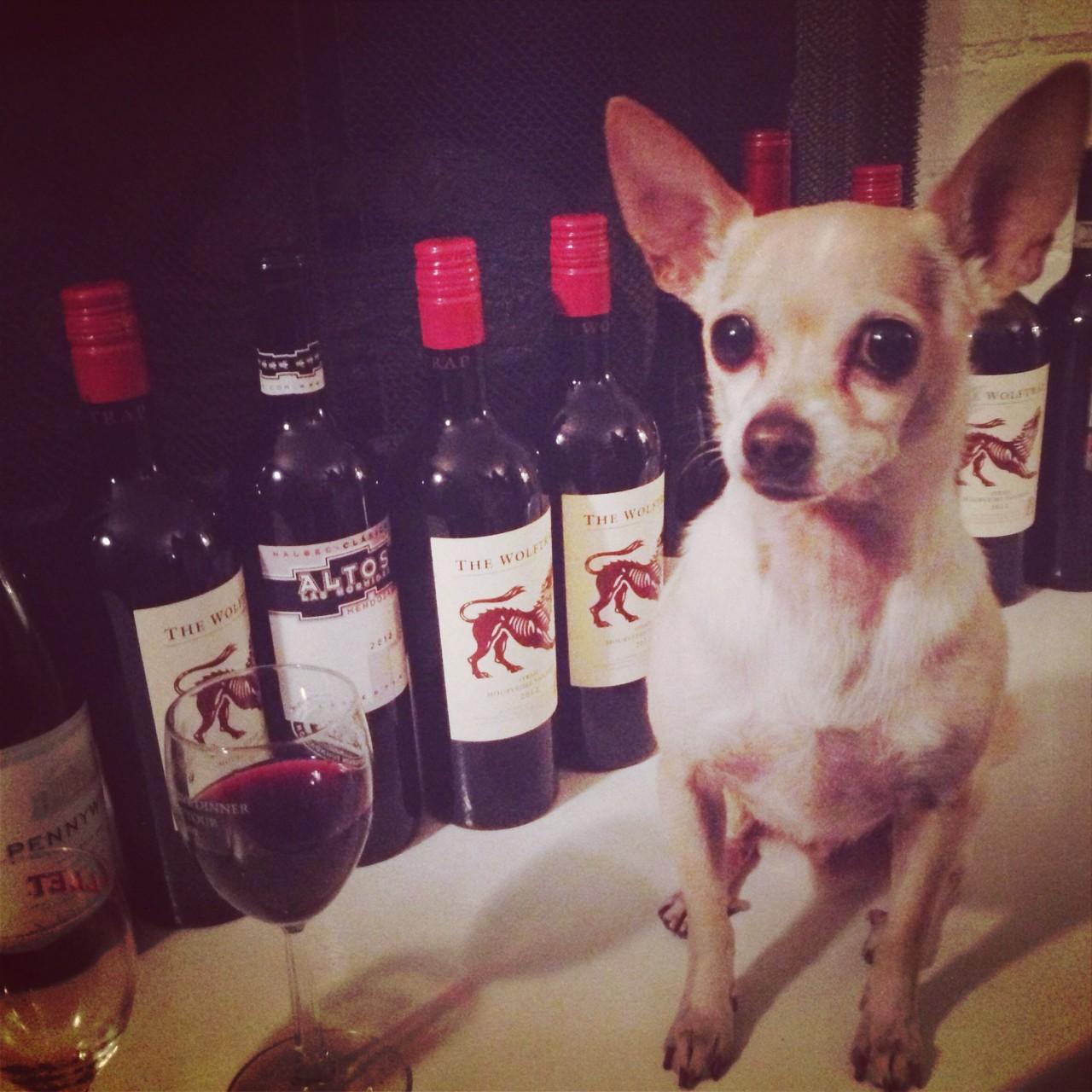 Drink Wine, Save Puppies!